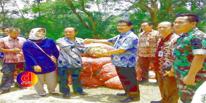 KABUPATEN PEKALONGAN BAKAL MENJADI SENTRAL PENGHASIL BAWANG TERBESAR SE-JAWA TENGAH