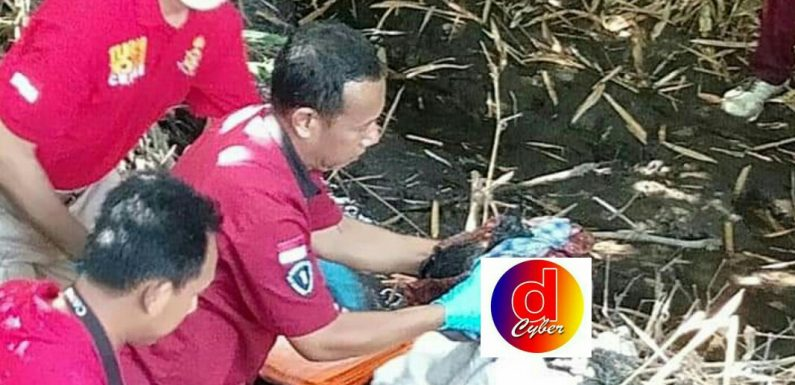 Polisi Ringkus Dua Pelaku Mutilasi dan Temukan Potongan Kepala Korban